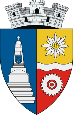 Consiliul Local Brezoi