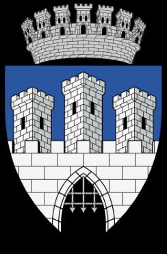 Consiliul Local Cluj